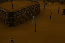 Zybez RuneScape Help's Thumbnail Screenshot of the Rogues Den. Click for full size image.