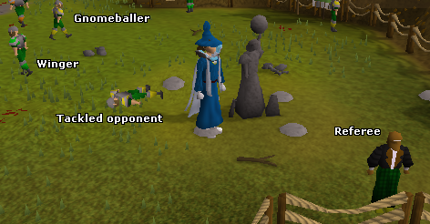 Zybez RuneScape Help's Screenshot of the Gnomeball Field