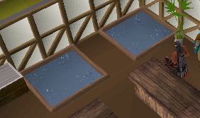 Zybez RuneScape Help's Screenshot of the Pet Fish Aquarium