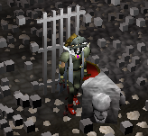 Zybez RuneScape Help's Screenshot of a Maze