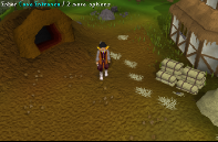 Zybez RuneScape Help's Image of the Cave