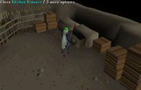 Zybez RuneScape Help's Screenshot of Searching the Kitchen Drawer
