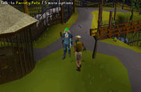 Zybez RuneScape Help's Screenshot of Talking to Parroty Pete