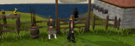 Zybez RuneScape Help's Image of the Fishing Contest