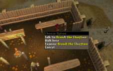 Zybez RuneScape Help's Screenshot of Brundt the Chieftain