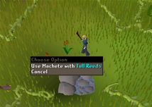 Zybez RuneScape Help's Screenshot of the Tall Reeds