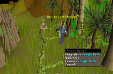 Zybez RuneScape Help's Screenshot of the Jungle Bushes