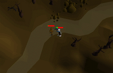 Zybez RuneScape Help's Screenshot of Attacking the Mourner