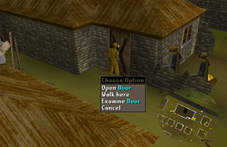 Zybez RuneScape Help's Screenshot of the house where Elena is held captive
