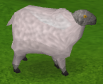 Zybez RuneScape Help's Image of a Sheep