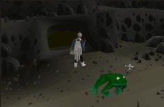 Zybez RuneScape Help's Image of Lumbridge Swamp Tunnel