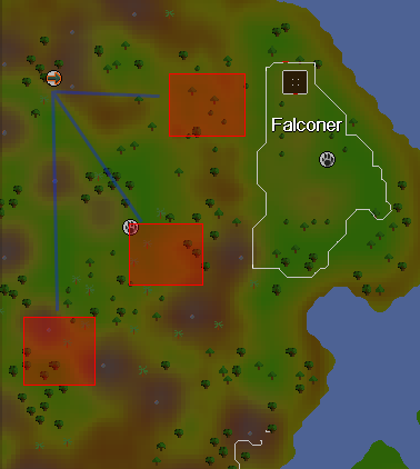 Zybez RuneScape Help's Image of the Copper Longtail Hunting Area