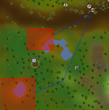 Zybez RuneScape Help's Image of the Tropical Wagtail Hunting Area